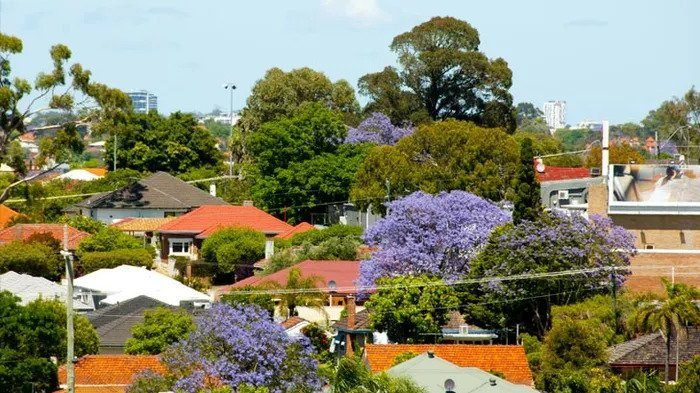 Property seeing fastest price rise in 17 years – what about rates?